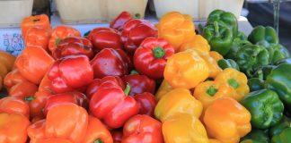 Stonegate Farmers Market