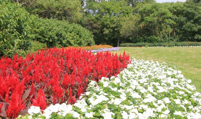 James Gardens Park