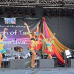 Fusion of Taste Festival