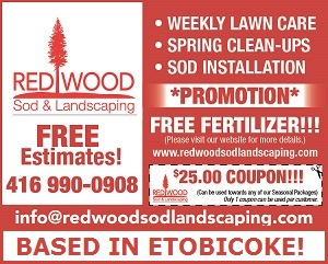 Redwood Sod and Landscaping