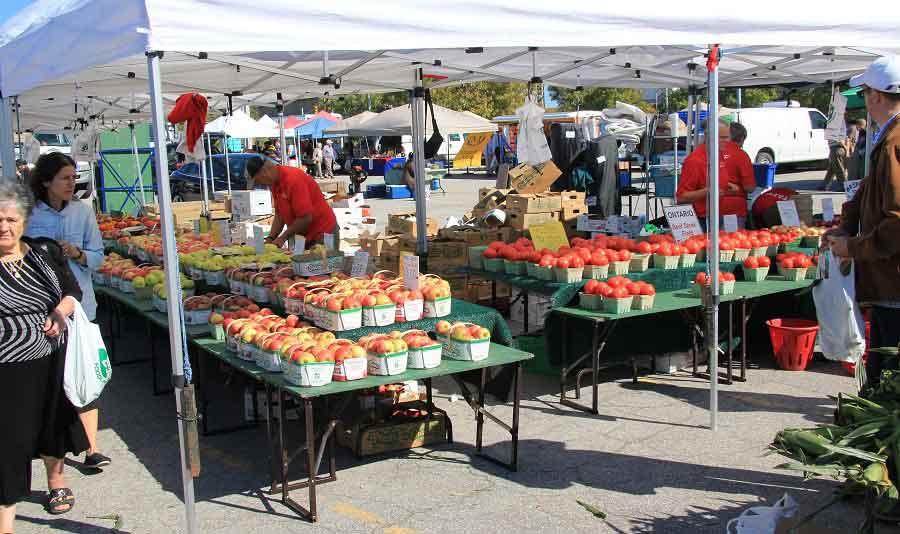 Etobicoke Farmers Market
